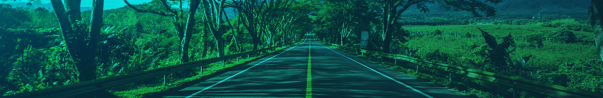 Trading Course from Two Roads Trading